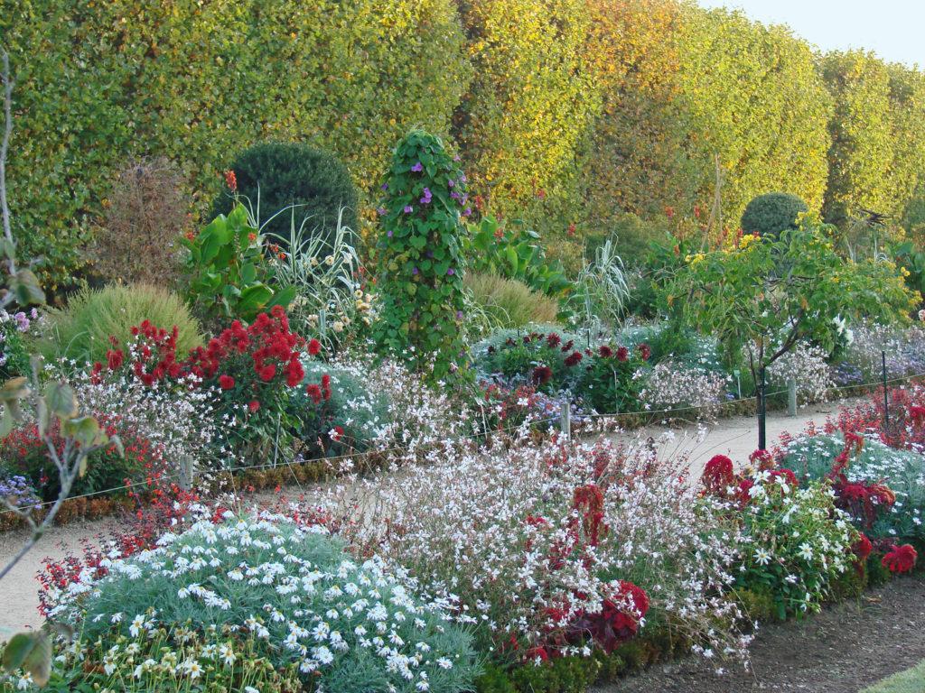 jardim-botanico-paris